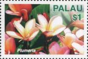 timbre succulent